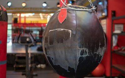 Boxing Circuit Wk 1 (T4)