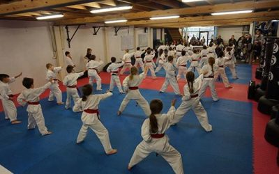 Taekwondo Classes resume Wednesday 27th January